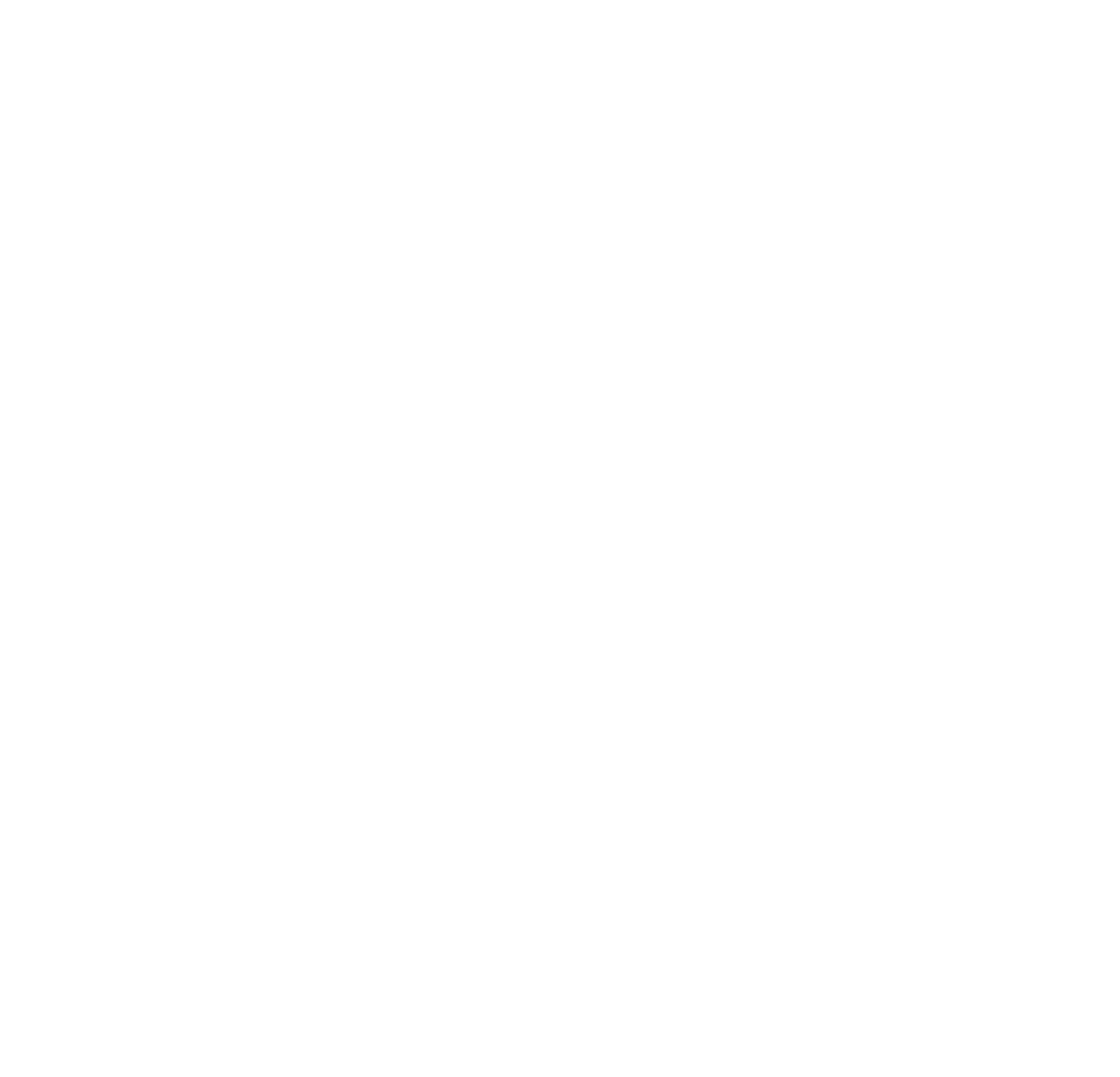 Social Icon Instagram